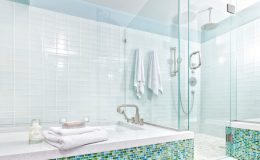 Contemporary-Home-Bathroom-with-Shower-Stall,-Tub-and-Glass-Tiles-000090001413_Large